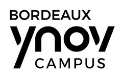 logo ynov Bordeaux